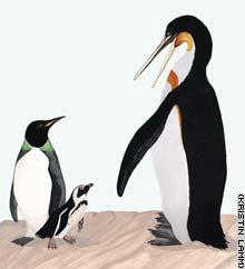 vert.penguins.smaller.jpg
